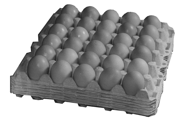 Egg Trays (30 Chicken Eggs)