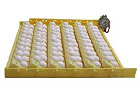 Hova-Bator Automatic Egg Turner with Quail Egg Racks